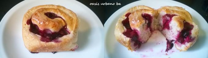 Oasis Urbano BA, Rolls de arándanos y limón 06